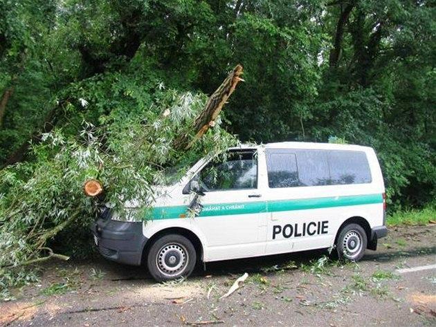 Počet vraždících stromů v republice zřejmě stoupá. Nedávno napadl jeden z nich policejní dodávku na Svitavsku.