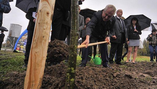 To je on. Karel. Strom, který Miloš zasadil pro Jirku.