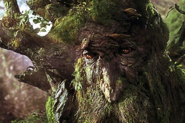 Hanba! Paní Merunková se těšila na Stromovouse, ale jednalo se o Falšné stromy!