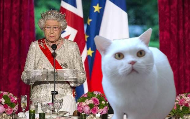 Tohle byl zážitek na celý život! Královna Alžběta čte Libunino poselství!