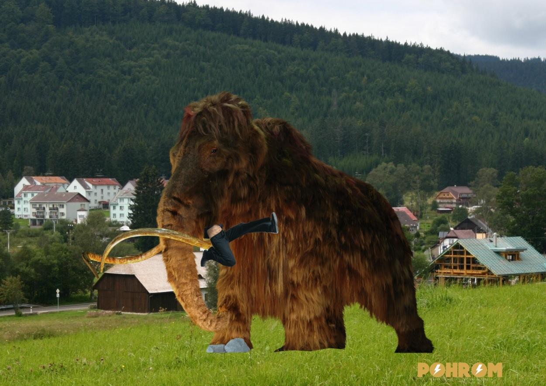slagra-sezral-mamut