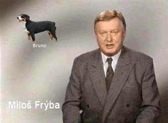 bruno-v-televizi-nahledovka