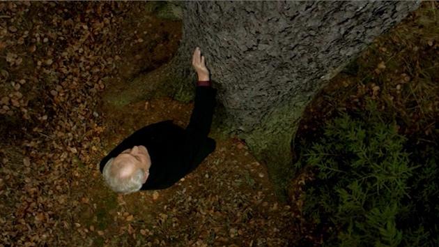 Miloš Zeman, před svým zizením, hladil stromy v podstatě neustále.