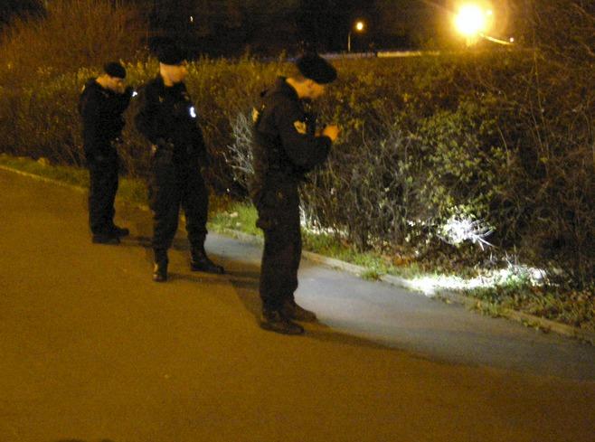 Policistů v křoví postupně přibývalo.