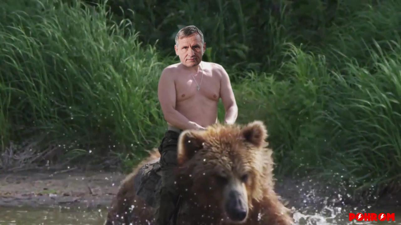 medved-cunek
